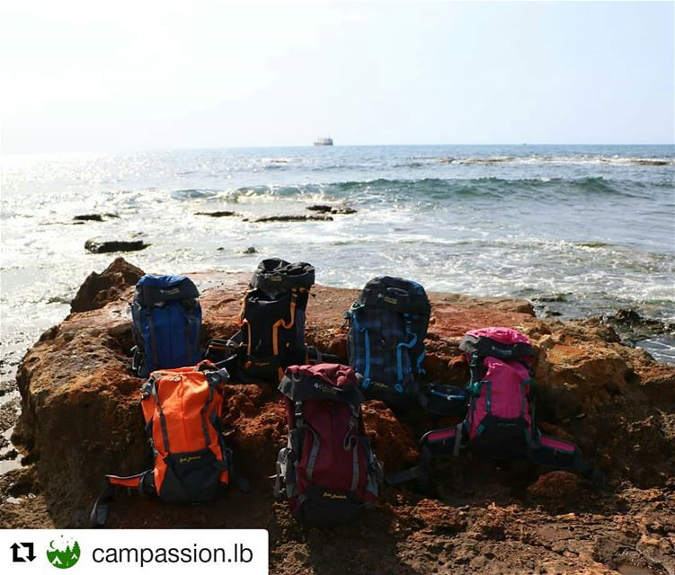 Follow campassion for good quality/price camping and hiking gear camping...