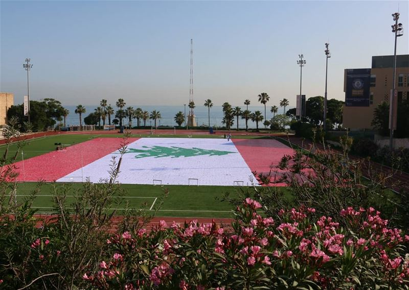 The biggest mosaic flag in the world. Witnessing a Guinness moment at AUB... (American University of Beirut (AUB))