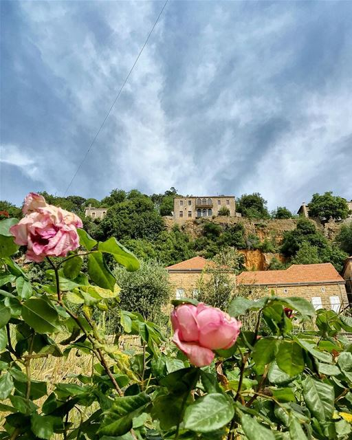 mountains  village  flowers  sky  house  architecture  photooftheday ...