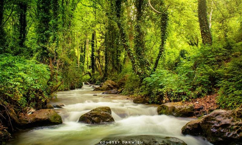 hiking  lebanon  river  longexposure  nature  priroda  photography  nikon... (Bcharré, Liban-Nord, Lebanon)