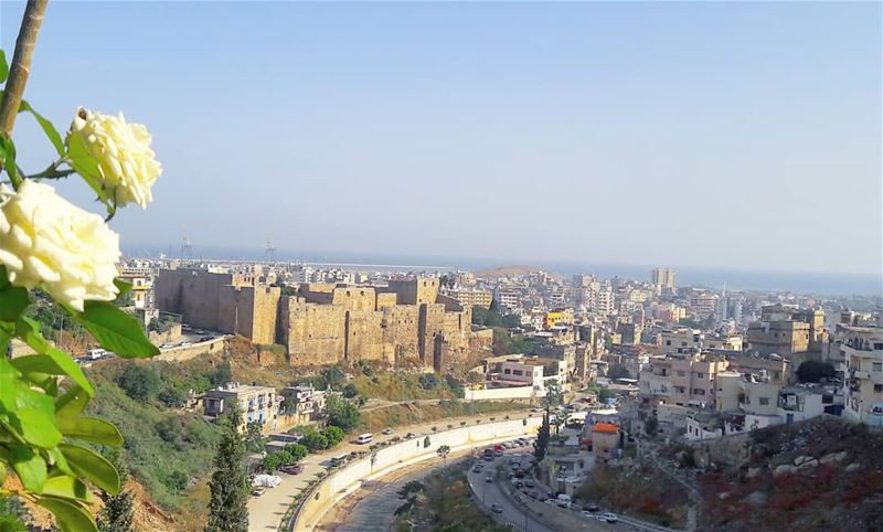 Good morning  Tripoli LiveLoveTripoli   TripoliLB   Castle  Citadelle ... (Tripoli, Lebanon)