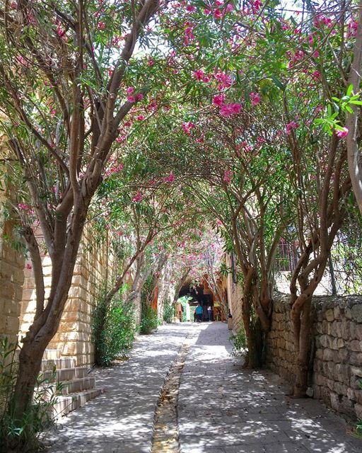 A Spring Day in Byblos • 🇱🇧.....  beautifullebanon  livelovebeirut... (Byblos, Lebanon)
