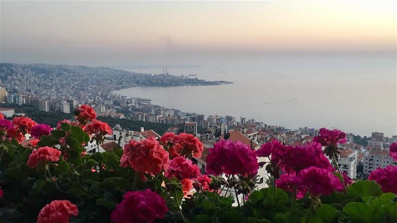 May every sunset bring you peace. magical view nature naturelovers photo... (Ghazir, Mont-Liban, Lebanon)