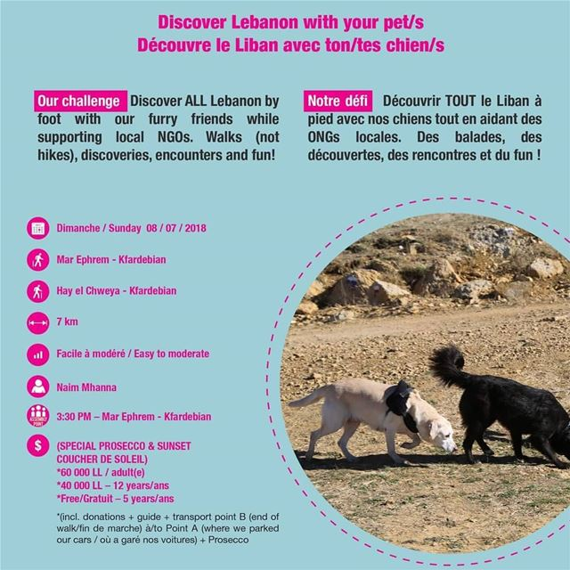 Discover Lebanon wirh your pets tourleb  tourlebanon  lebanontimes ... (Kfardebian,Mount Lebanon,Lebanon)