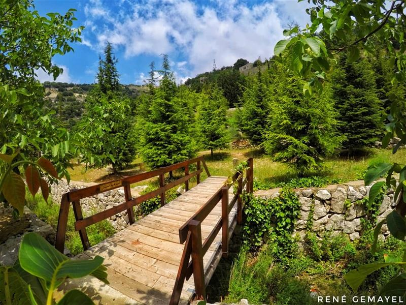 Each day is the opportunity to create more beautiful memories....... (Mayfuq, Mont-Liban, Lebanon)