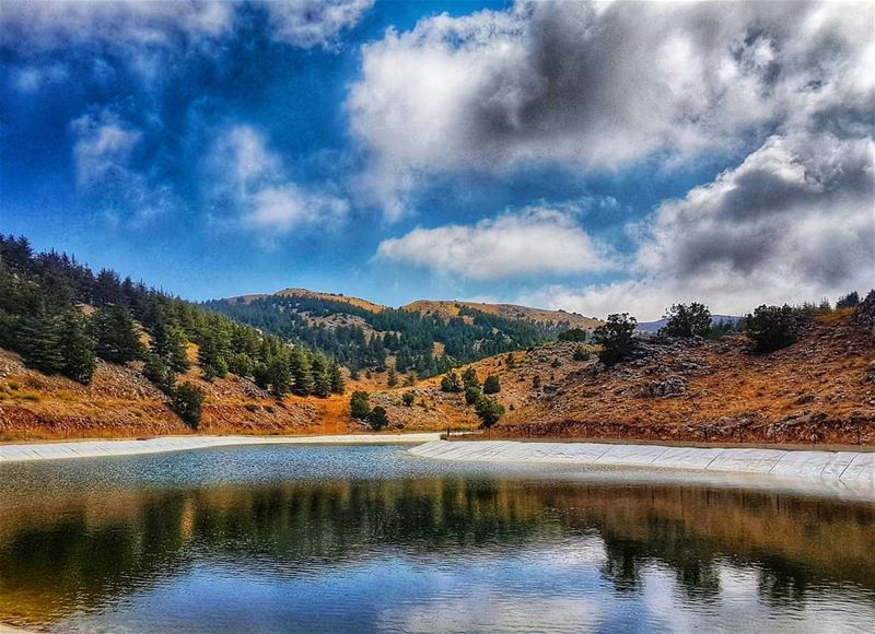 Shapes on water  reflection  lake  clouds  livelovebeirut  ig_lebanon ... (Al Shouf Cedar Nature Reserve)