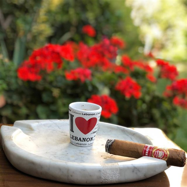 Break in zahle H.UPMANN MAGNUM 54. break afternoon cigar cigars coffee... (Zahlé, Lebanon)