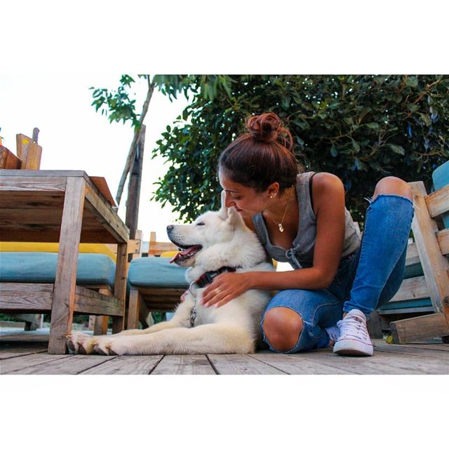 🐶 livelovelebanon  livelovepets  livelovebatroun  lebanonadventure ... (Batroûn)