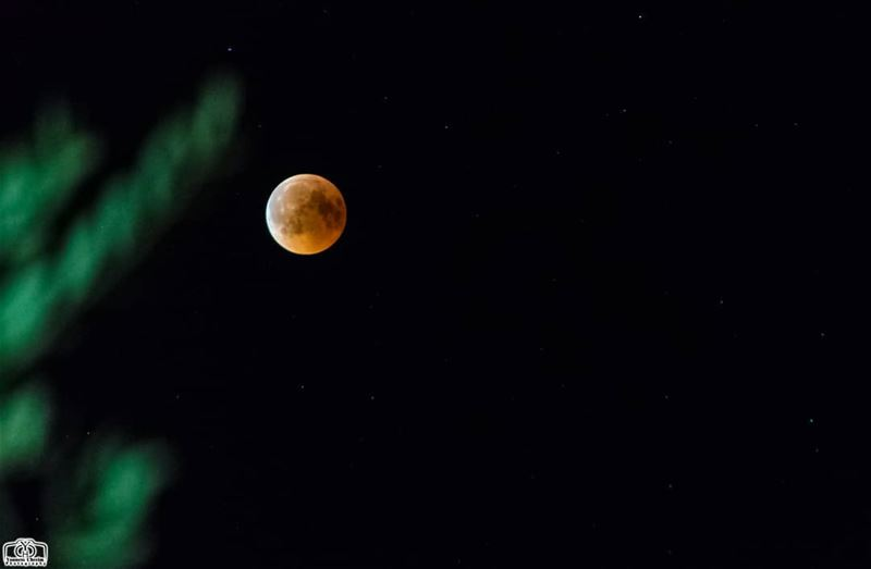 moon eclipse from houmine al fawka  moon  bloodmoon  blood  eclipse ...