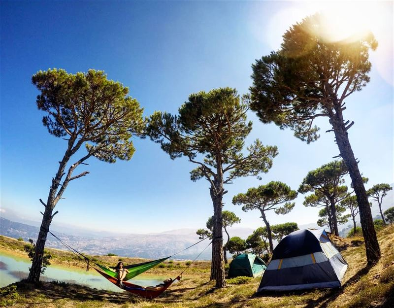 After An Amazing Night 🌌 Comes The Ultimate Good Morning 🌞🌳🏕️... (Falougha, Mont-Liban, Lebanon)