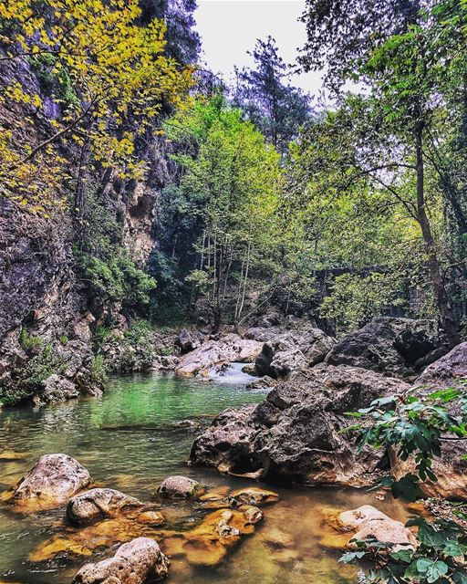 Back from a very long break from  socialmedia .... chouwen ... (Chouène, Mont-Liban, Lebanon)