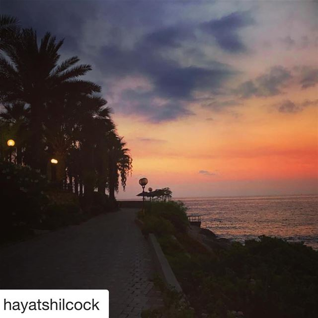 Repost @hayatshilcock with @get_repost・・・That minute after the sun goes...