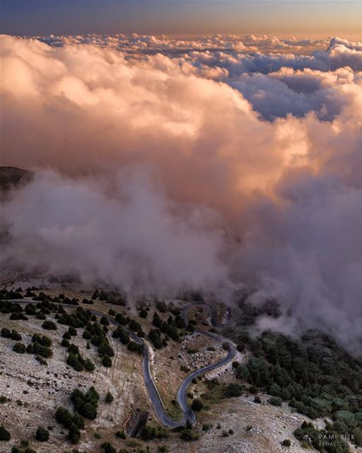 Just crossed Heaven 🌫️... chouf  lebanon  dji  drones  quadcopter ... (Maaser El Shouf Cedar Reserve محمية ارز معاصر الشوف)