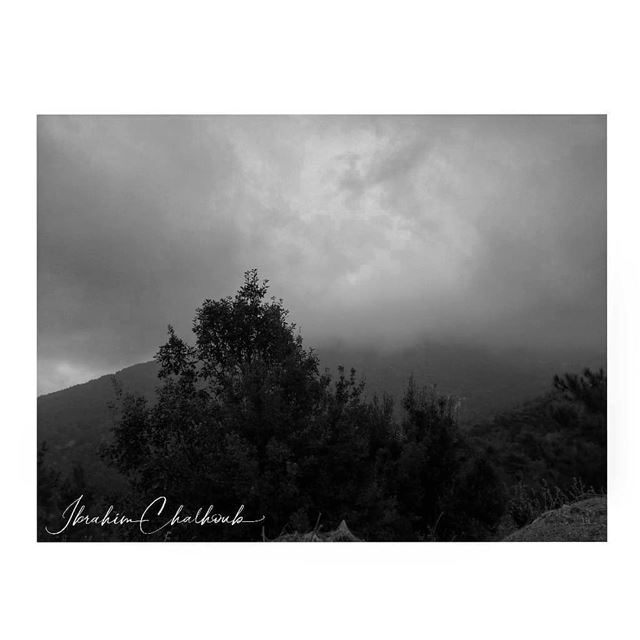 Fog -  ichalhoub was in Ehden north  Lebanon shooting with a mobile phone ...