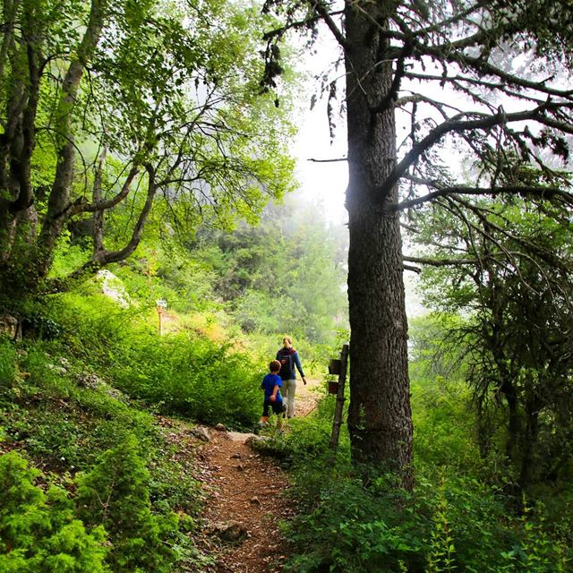Join ProMax this Sunday, September 02 to an exceptional hike to Ehden...