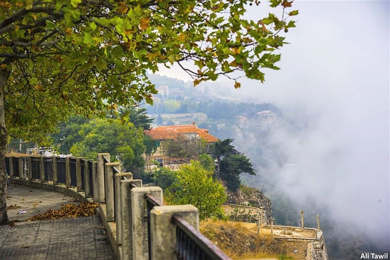 🏡☁️  nature  naturelovers  fog  beautiful  picoftheday  photography ... (Sawfar, Mont-Liban, Lebanon)