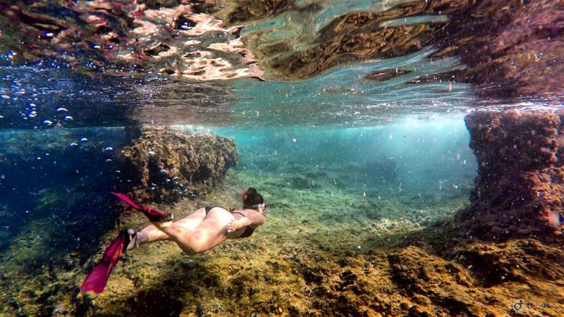 Keep the  explorer in your life  ocean  oceanlover  snorkling  diving ... (Ramkîne)