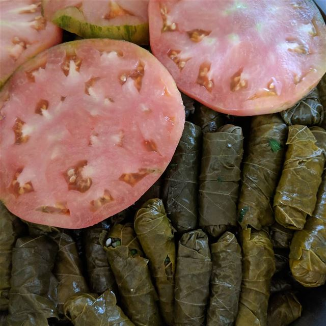 ورق عريش بزيت vineleaves  lunch  lunchtime  grapesleaves  food ...
