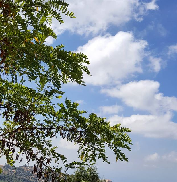 clouds  sky  lebanoninapicture  ptk_lebanon  livelovebeirut ... (Mount Lebanon Governorate)
