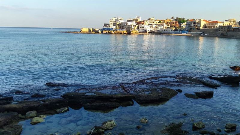 A calm morning....Batroun 🌊 .......... protectoursea ... (NCMS-National Center for Marine Sciences  / CNRS-Lebanon)