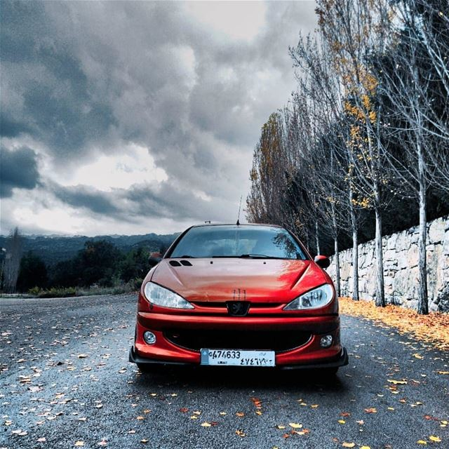 peugeot  206  206sd  red   Pslmember  loyalmember  sidialebanon ...