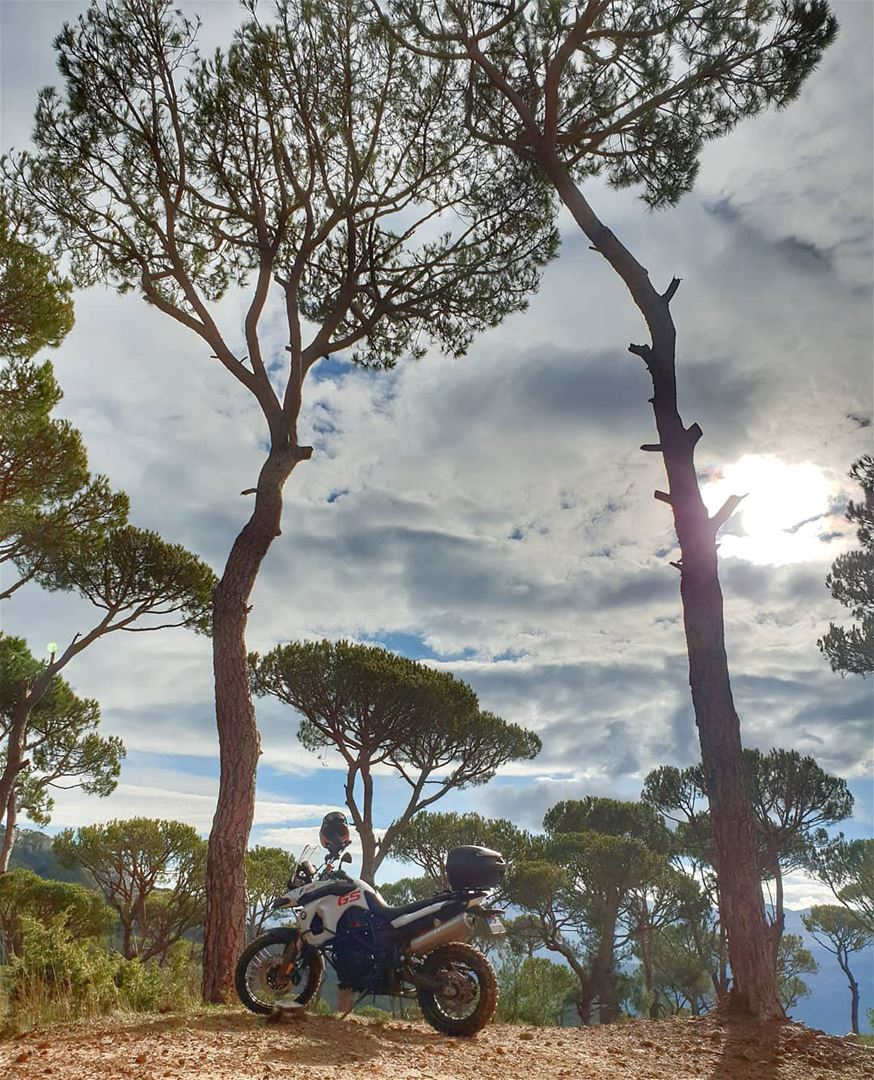 Going more lovely places together 🌳🌳 bmw bmwmotorcycle bmwmotorrad...