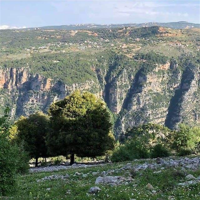 Spend your First Day of December in  JabalMoussa ! unescomab  unesco ... (Jabal Moussa Biosphere Reserve)