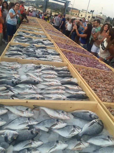 Biggest Sea Food Display (Batroun in Guinness World Records)