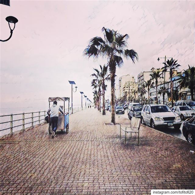 landscape seaside  visitsaida  livelivesaida  myhometown  photooftheday ...