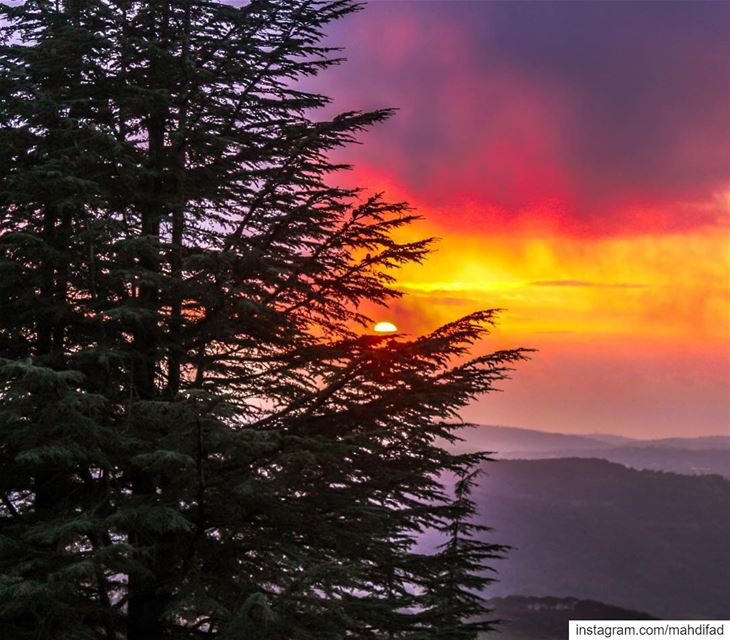 🌅🌅.......... Sunset sunshine nature landscape shouf clouds... (Al Shouf Cedar Nature Reserve)