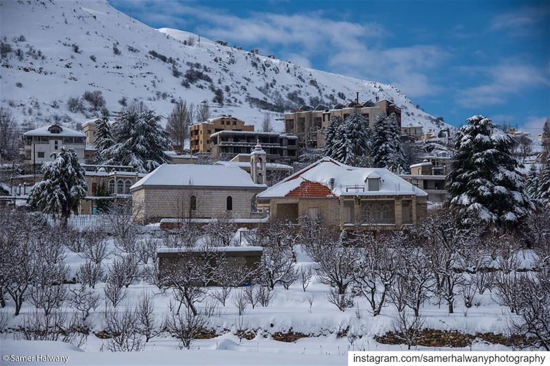 Neighbours of the white...from the heart of  kfardebian  faraya  mzaar ...