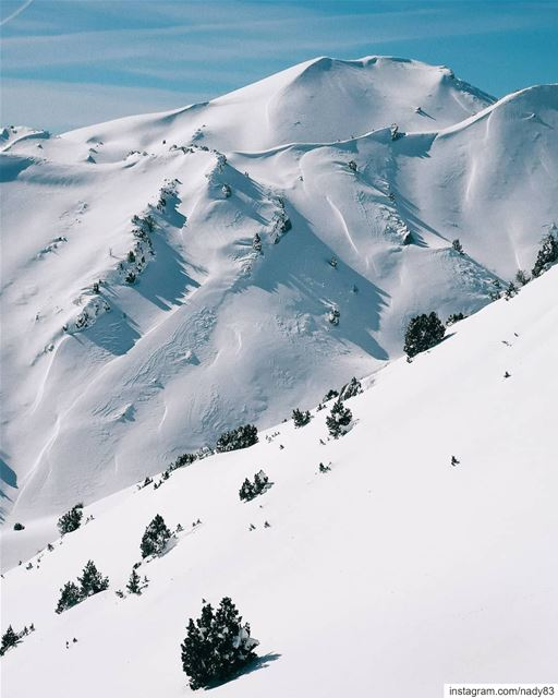 Into the white. backcountryskiing skitouring lebanon snow  ski ...