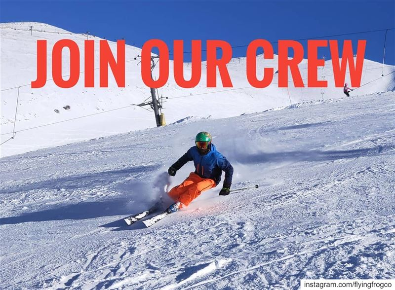 Do you have good skiing skills? Are you patient? A snow fanatic? Wanna... (Mzaar Kfardebian)