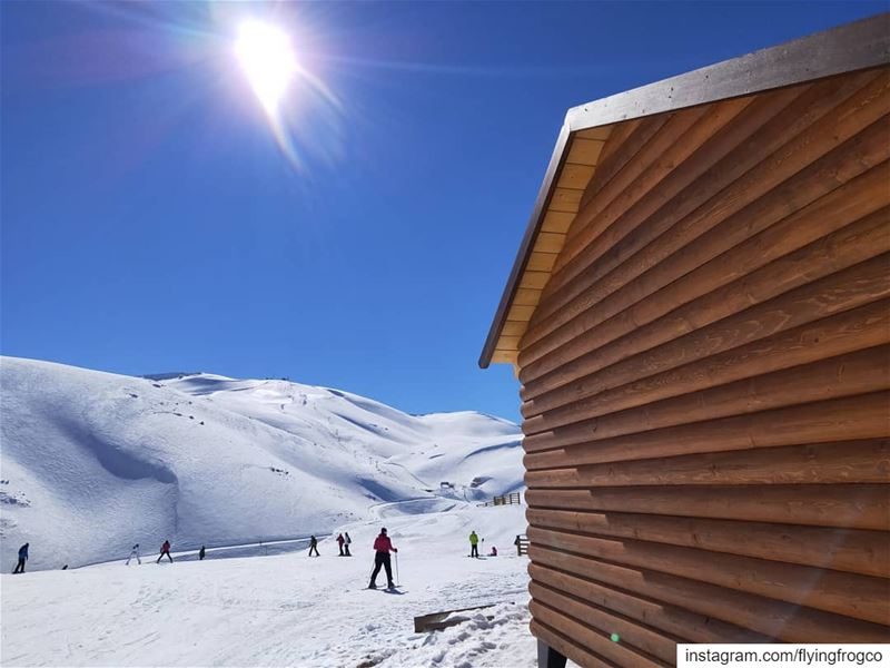 Another beautiful day to skiJoin us on weekdays for ski lessons....... (Mzaar Kfardebian)