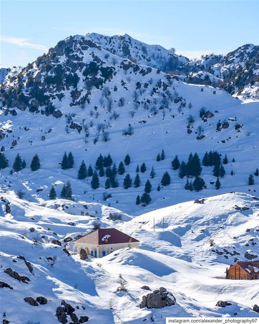 Living in the Winter wonderland ❄️🏠 - The beautiful snowy mountains of... (El Laklouk, Mont-Liban, Lebanon)