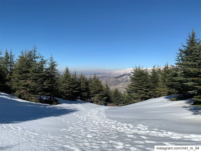 snow  winter  nature  ski  photography  mountains  love  mountain ... (Arz el Bâroûk)