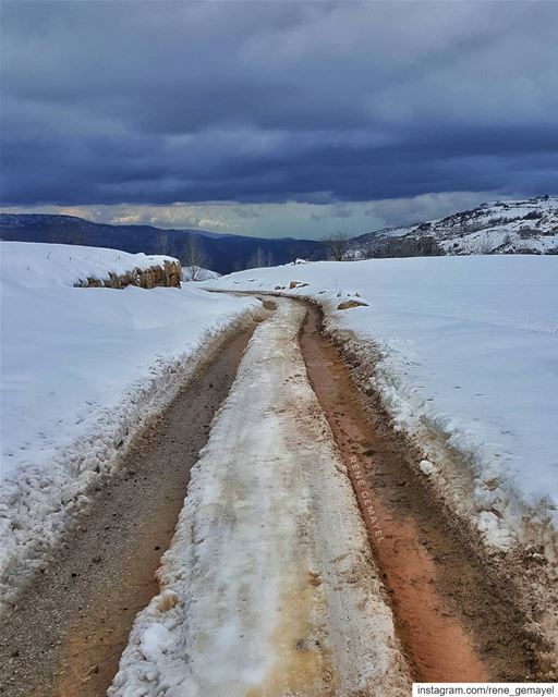 Why follow someone else's tracks when u can make your own ???....... (Mount Lebanon Governorate)