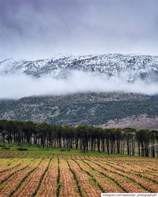 A Stormy Day - Kefraya West bekaa and the snow capped mount Barouk after a... (West Bekaa)