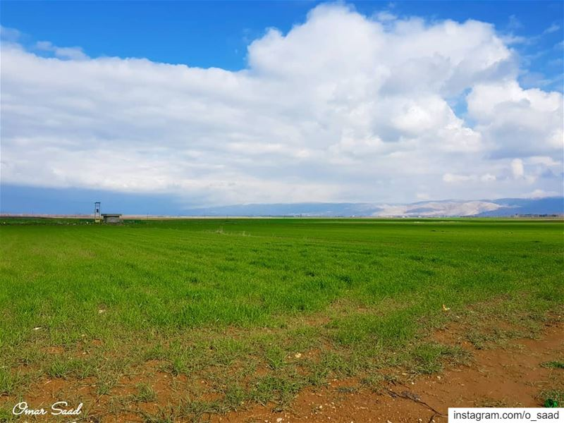 From Ammiq  field land landscapephotography  photooftheday  lebanon  bekaa... (Lebanon)