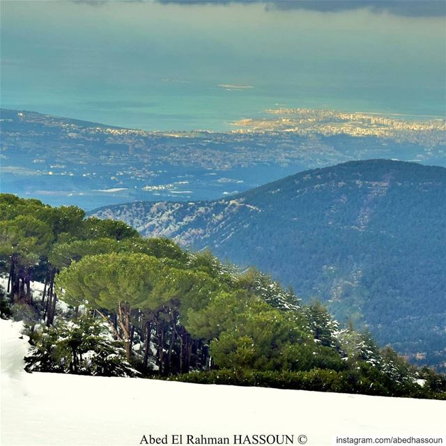 Tripoli and its islands as seen from Bsharri district ❄............ (Bcharri, Liban-Nord, Lebanon)