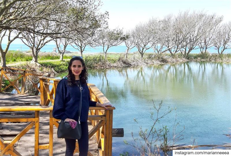 Enchanting ⭐ Tyre Coast Nature Reserve ⭐ Water Springs near the Sea ⛲ 🌊 (Tyre Coast Nature Reserve - محمية شاطئ صور الطبيعية)