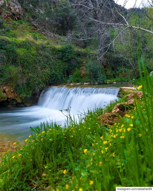 Southern beauty 🏞....... landscapephotography naturephotography... (Nabatieh Governorate)