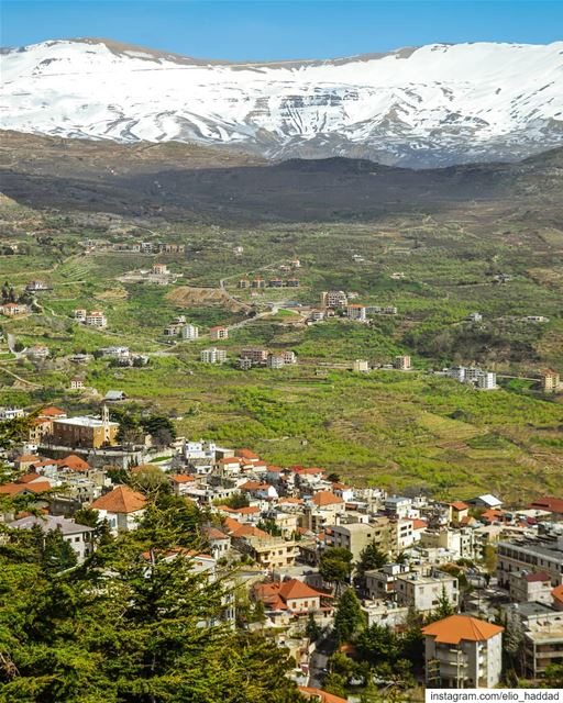 Morning 🌞  Lebanon  Ehden 🇱🇧  LiveLoveEhden  LiveLoveBeirut ... (Ehden, Lebanon)