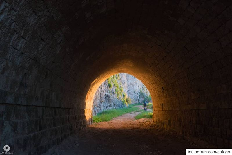 The soothing light and the end of your tunnel is just a person riding the... (Chekka)