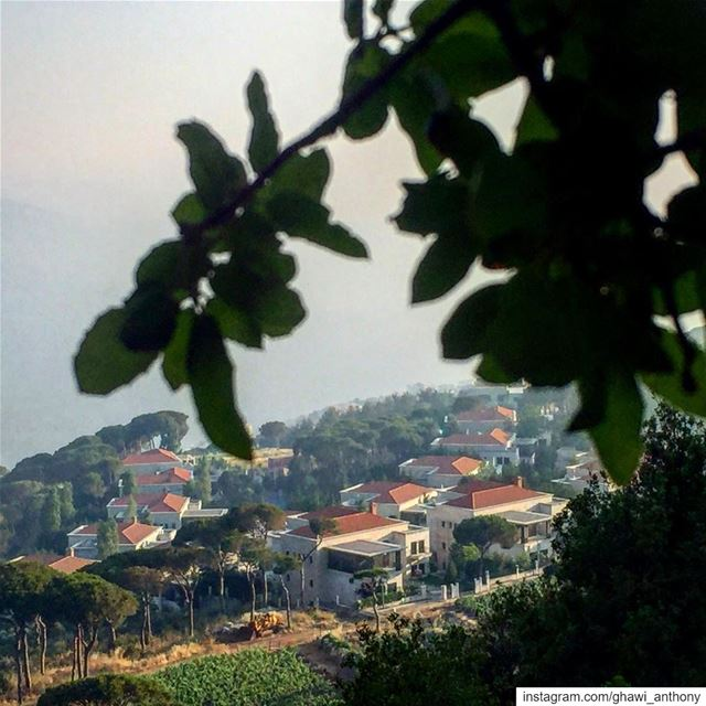 🏡🍃————————————————— houses  trees  villages  view  lebanesevillages ... (Mar Musa, Mont-Liban, Lebanon)