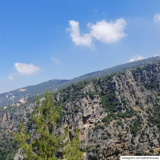 Breathtaking scenery on your way to  Chouwan. JabalMoussa  unesco ... (Jabal Moussa Biosphere Reserve)