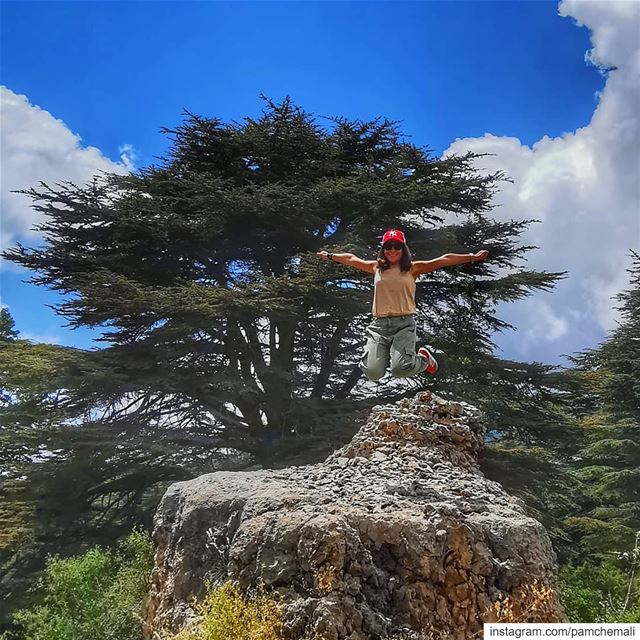 Aim  high and you won't shoot your foot off 🤞@huaweimobile huaweip30pro... (Cedar Reserve Tannourine)