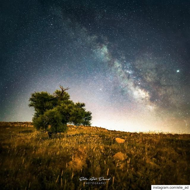 Summer = Milky Way Canon 5d iv, Samyang 16mm f2, ratio 1:1 milkyway ... (Qanat Bakish, Mont-Liban, Lebanon)