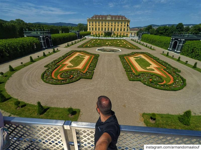 A beautiful piece of botanic architecture at Schönbrunn Palace. These... (Schonbrunn Palace)