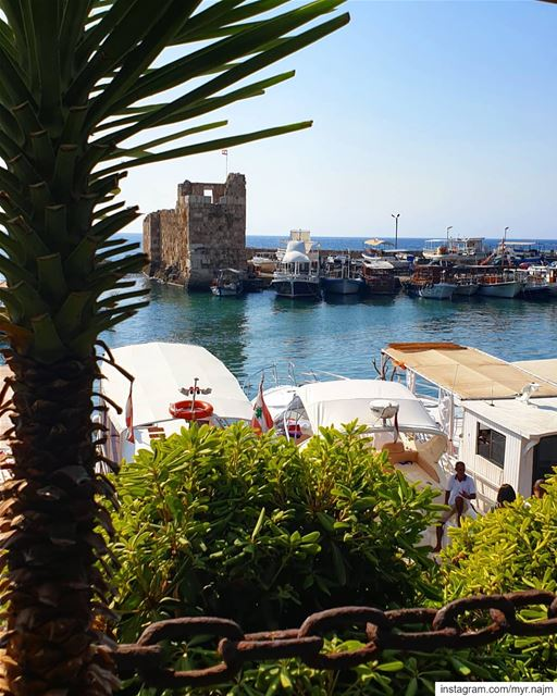 Enjoying the last days of summer in  Byblos ......... Lebanon ... (Pepe's Byblos Fishing Club)